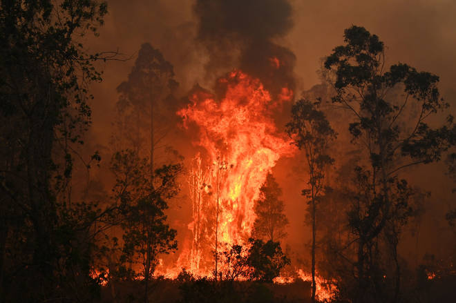Catastrophic bushfires in eastern Australia have killed at least three people and forced thousands from their homes.