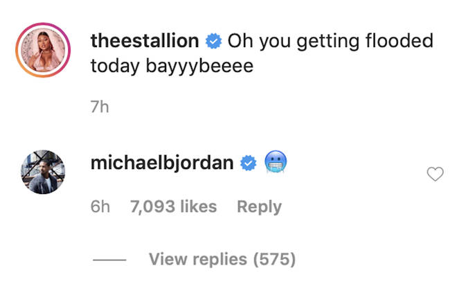 'Black Panther' star Michael dropped an icy face emoji beneath Megan's racy video.