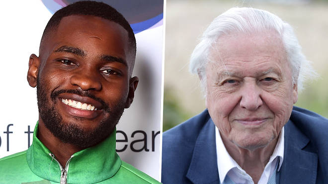 Sir David Attenborough and rapper Dave join forces for a 'Planet Earth' special
