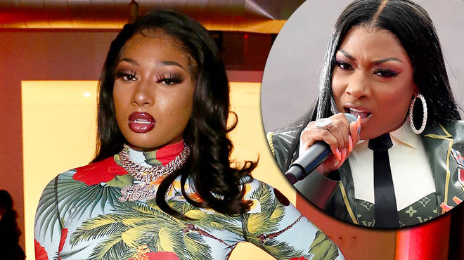Megan Thee Stallion claps back at troll's question about shooting incident