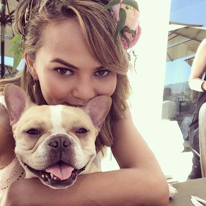 Chrissy Teigen shares a photo of herself and her French Bulldog, Pippa - who has sadly passed away.