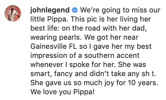 John Legend pays homage to his and Chrissy's French Bulldog, Pippa.