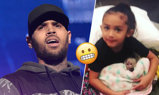 Chris Brown could be facing a six month jail sentence for having a pet monkey.