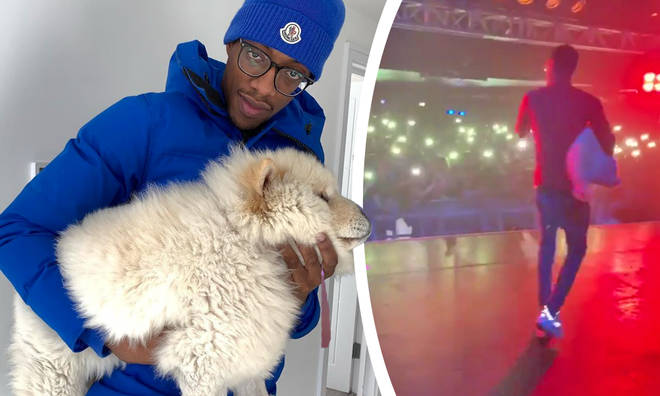 MoStack brought his dog out on stage and it split fans' opinion