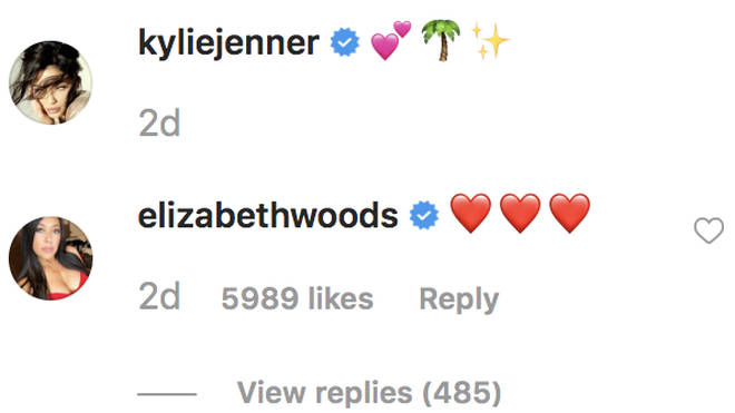 Jordyn Woods' mother Elizabeth Woods comments on an adorable photo of Stormi Webster